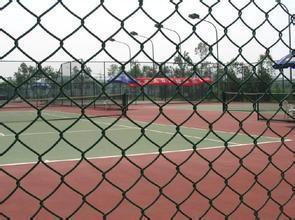 北京动物园勾花围栏,勾花铁丝网规格,国标勾花网厂