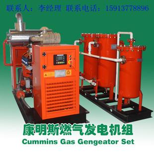 供应广西养殖场/酒精厂50KW/120KW/200KW专用康明斯沼气发电机组