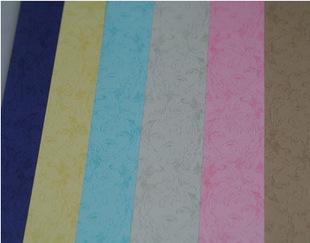 金达平板凤尾 封皮纸 装订纸 皮纹纸160g A3+ 100张
