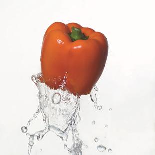 长期供应大量有机蔬菜   无公害绿色蔬菜