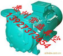 供应真空泵水环真空泵循环水真空泵旋片真空泵惠州常盛真空泵