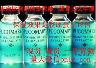 现货批发 比利时进口pucomary玻尿酸原液 蓝色玻尿酸小瓶20ML