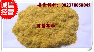 厂家大量销售和批发苜蓿草粉