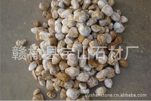 浅黄色卵石 土豪金 金色鹅卵石 豆黄色,水磨石 黄色石 山石矿石