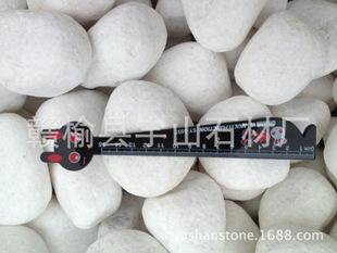 江苏连云港石子 石头 机制鹅卵石 白玉 天然鹅卵石 山石50-80mm