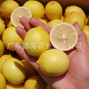 安岳尤力克柠檬品种 新鲜 黄柠檬 产地直销  柠檬批发 8月20发货