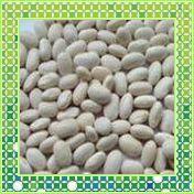厂家大量供应白芸豆提取物10:1