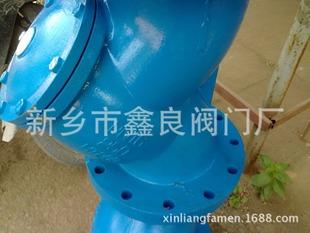 新乡球磨铸铁 水处理 Y型过滤器 GL41H-16 鑫良厂家直销DN200