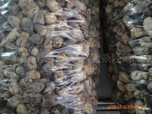 优质干草菇粒