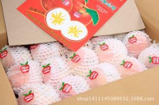 优质水果大量供应批发 阿克苏 质量保证