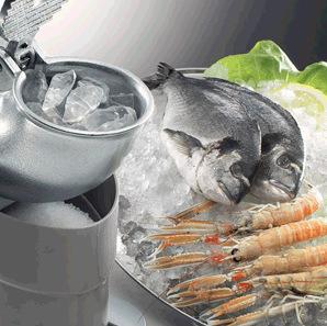 刨冰机厂家,森马刨冰机,进口刨冰机,品牌刨冰机