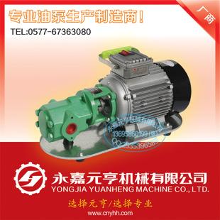 WCB齿轮泵 齿轮泵 微型齿轮油泵 柴油齿轮泵 大流量齿轮泵