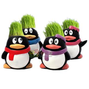 [特]企鹅qq迷你盆栽批发 diy卡通陶瓷草头种植厂家直销 手工制作