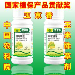 烟嘧磺隆 40克/升 玉京香 农药 玉米苗后除草剂100ml