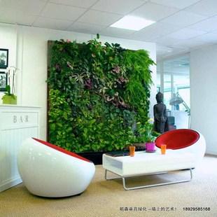 国内首创雾培植物墙 垂直绿化植物墙 绿化植物墙 新型植物墙