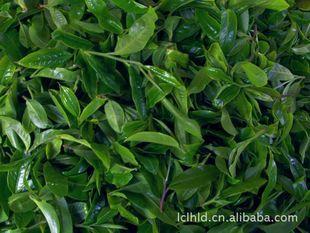 【厂家直销】批发供应优质2012景迈古茶357g