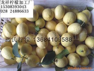 龙祥柠檬干供应四川优质柠檬基地 柠檬之乡 柠檬之乡