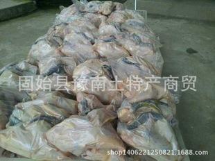 大量批发野鸡白条【净膛冷冻】可全国发货 固始鸡 青脚淮南王厂家