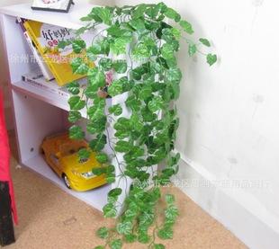 花藤绿萝室内装饰藤