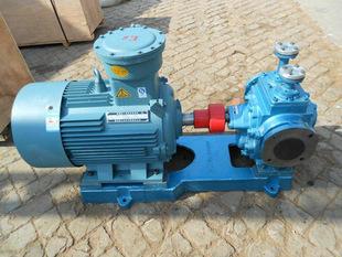 RCB-32/0.6保温齿轮泵 不锈钢保温齿轮泵 高温保温齿轮泵