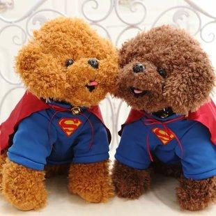 卡通超人狗毛绒玩具公仔超可爱毛绒生日礼物