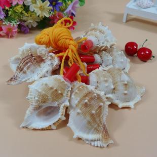 天然小海螺 口哨 海螺贝壳工艺品