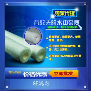 供应进口美国滤芯  GE滤芯PX05-40  40寸GE滤芯及GE滤芯堵头