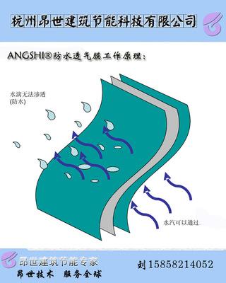 厂家供应体育馆专业防水透气膜 TPO防水体系中防水、防潮材料