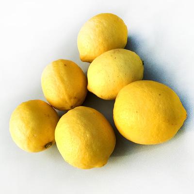 新鲜现摘柠檬 一级黄柠檬供应 安岳新鲜柠檬 柠檬批发 柠檬榨汁