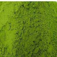 厂家直销大量批发绿茶粉抗氧化绿茶防晒抗辐射超细绿茶粉