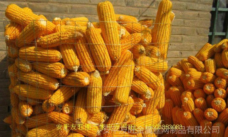 安平友旺电焊网厂家圈玉米电焊网、粮仓网