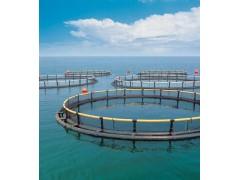 湖水除藻用-1kg/h次氯酸钠发生器