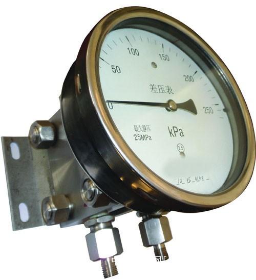 压力表-上仪集团压力表质量好、价格低-双膜片式高静压差压压力表