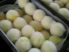 供应砀山酥梨