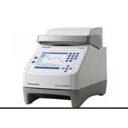 EppendorfMastercyclernexusgradient梯度PCR仪