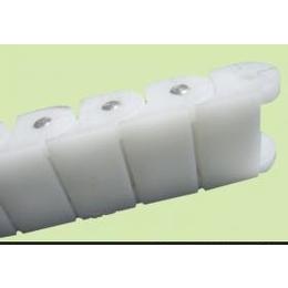 各种RS60P塑料链条
