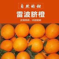 雷波脐橙 新鲜脐橙 生鲜水果果园现摘现发 基地直销10斤装批发