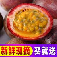 紫香一号百香果大果 鸡蛋果 新鲜水果 百香果批发 微商一件代发