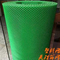 塑料筛网 塑料养殖网 万能网 胶网 不锈钢网 (1米*3mm*30米)
