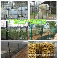 铁网 荷兰网 养殖围栏网 防护圈地围网 养鸡护栏网 围栏铁丝网