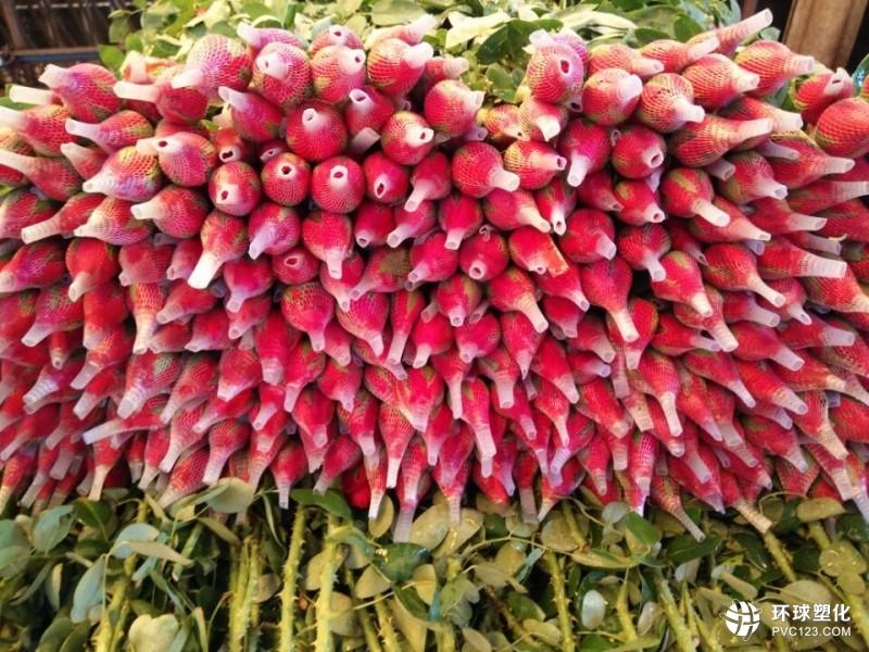 选优质玫瑰花网套就到东莞市越君塑胶龙8国际|娱乐场