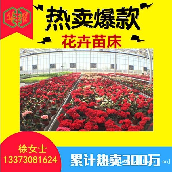 花卉苗床 (2)