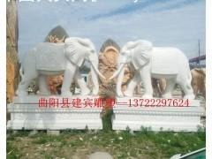 石雕大象-石大象-大理石大象雕塑