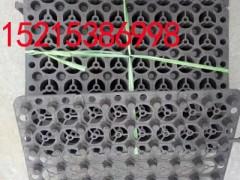 楼顶花园地下车库块状蓄排水板滤水板 (2)