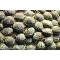 蛋化石能值多少钱