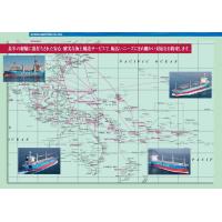 南太平洋航线专业船东国际海运集装箱散杂货特种箱