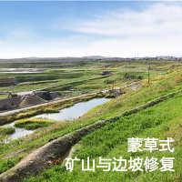 蒙草矿山与边坡修复一站式服务还绿色生态家园-最少5万平米起