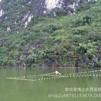 传承发展捕鱼文化,讲好中国故事,高效、环保国家专利捕鱼神器!
