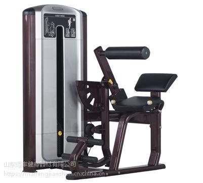 迈丰AD-009背肌训练器专业健身器材生产厂家