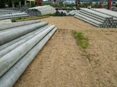 广州水泥电线杆厂、东莞水泥电线杆厂、增城水泥电线杆厂